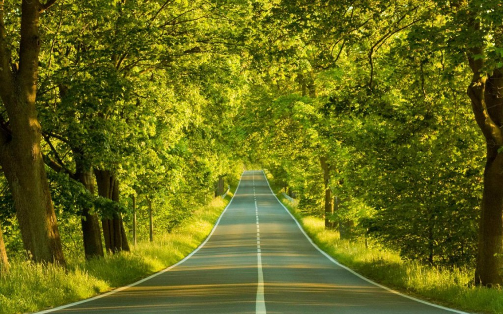 Road-Of-The-Spring-And-720x1152-1024x640