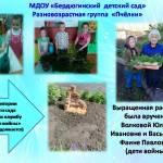 """МДОУ """"Бердюгинский детский сад"""""""