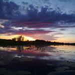шумкова юлия закат над рекой