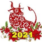 novogodnii-konkurs-simvol-2021-images-big (2)